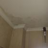 Reparar techo en baño
