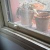 Cambio  ventana y arreglo persiana
