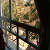 Reformas de ventanas en murcia
