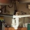Instalar fregaderos bajo marmol