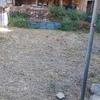 Hacer un jardín en mi casa