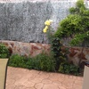 Hacer muro, patio