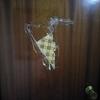 Hacer o reparar una puerta