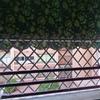 Ventanas aluminio para terraza cubierta