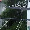 Ampliar altura barandilla metálica balcón