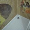 Sustitución plato de ducha por otro y su correspondiente alicatado y mampara