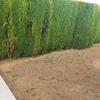 Hacer bordillo en el jardín