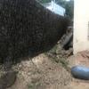 Construir Muro Bloque