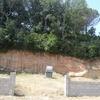 Limpiar parcela de 800 m2 solo hierva, no arboles