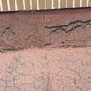 Colocación de tela asfaltica