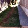 Cubrir Jardín de 100 m2 con Hormigón Estampado