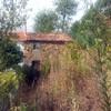 Allanar y Limpiar Parcela Dejarla Lista para Plantar Cesped o árboles