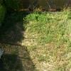 Reforma jardin: nivelar terreno para reducir la pendiente
