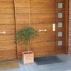 Dos puertas exteriores de