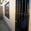 Rejas para ventanas y puerta