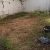Jardinero para desbrozar jardín y plantar cesped