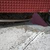 Impermeabilizar azotea comunitaria la de la foto es la finca contigua la finca en cuestión tiene tela asfáltica desgastada