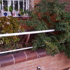 Vaciado e impermeabilización de una jardinera