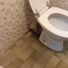 Instalar nuevo inodoro y lavamanos
