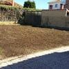 Plantar césped en 230 metros cuadrados de parcela