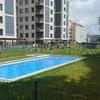 Mantenimiento anual de piscina y jardin de comunidad