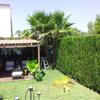 Puesta a punto del jardin cipreses, palmeras y jardin