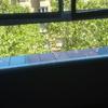 Camviar cristal ventana