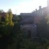 Sustitucion tela asfaltica tejado de caseta de jardin