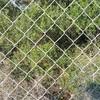 Puerta de 1 - 2 hojas de malla simple de torsión