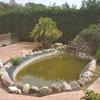 Limpieza estanque artificial con cascada