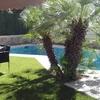 Valla decorativa jardin