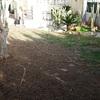 Poner cesped artificial en jardin