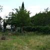 Desbrozar jardín y cortar árboles