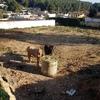 Zuncho perimetral en vilanova geltru