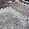 Embaldosar jardín en sarriguren (navarra)