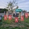Eliminar del jardín tocones