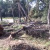 Tirar 4 pinos