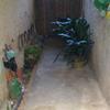 Reformar patio (alicatar las cuatro paredes y el suelo)