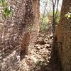 Rehabilitación de pueblo abandonado de 9 casas en lleida