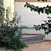 Limpieza, arreglo y posterior mantenimiento de pequeño jardín comunitario