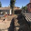 Quitar árboles y hacer jardín nuevo con plantar tres olivos