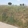 Nivelar terreno en duruelo segovia
