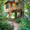 Construir casita de árbol sobre una encina