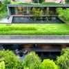 Realizar un jardín en la terraza