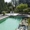 Quiero presupuesto para hacer una piscina de 8 metros x 3 metros.