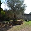 Diseñar Jardín Vivienda