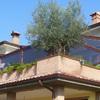 Cerrar terraza en redondela - galicia