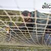 Instalar redes tejado para palomas
