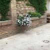 4cm patio exterior de casa , hormigón impreso