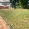 Mantener Jardín